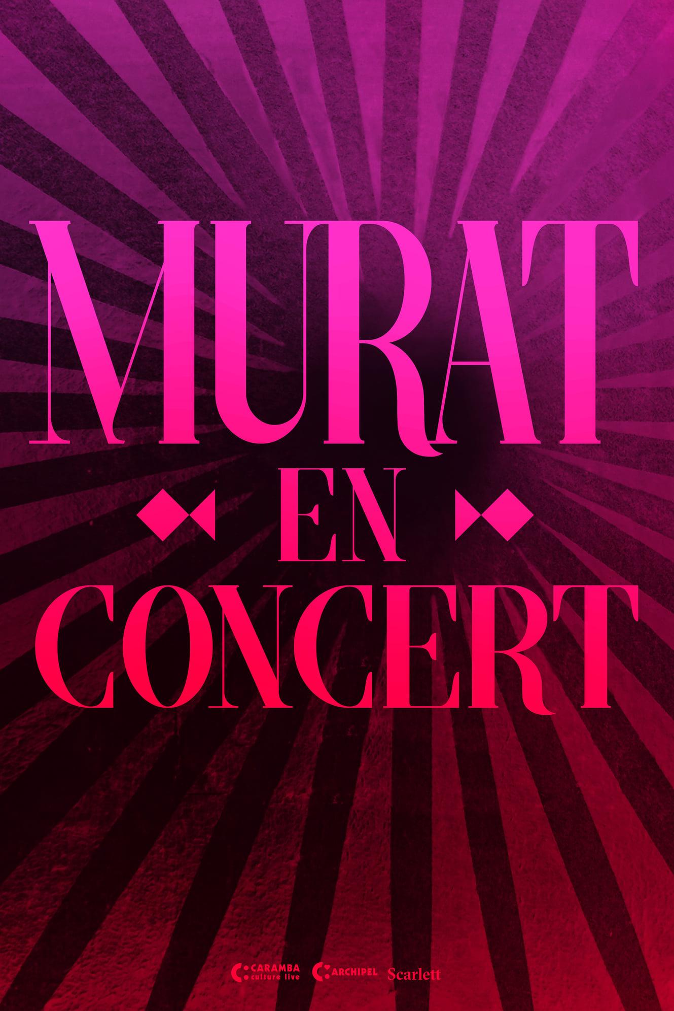Jean-Louis Murat en concert - 2020